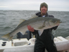 Salmon 2012 - last post by PhillyFisherman