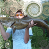 Where have you caught your biggest channel cat?  - last post by Romo